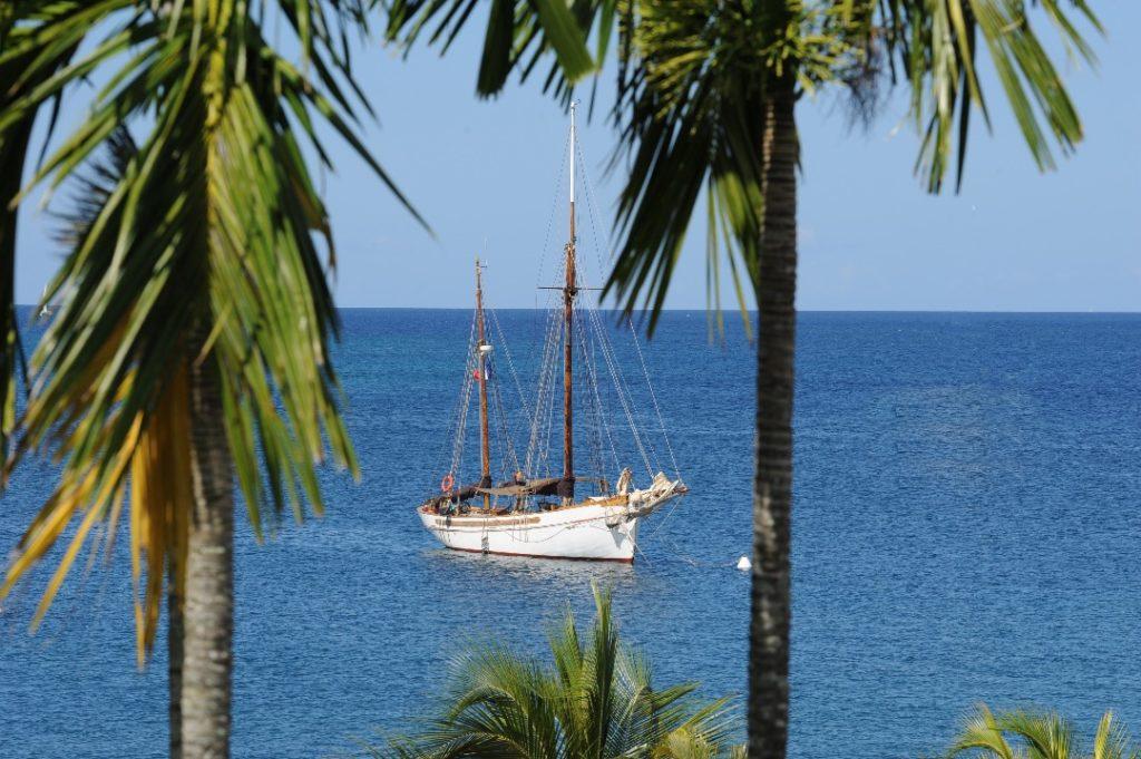 Voilier Samsara en mer - Voilier Martinique